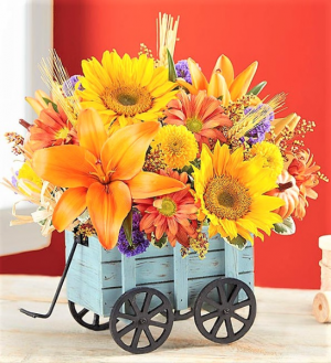 Harvest Hayride Perfect  Desk Top Gift for Autumn in Gainesville, FL | PRANGE'S FLORIST