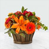 Harvest Memories Basket Floral Arrangement