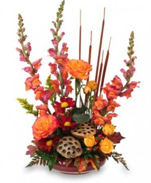HARVEST MOON Fall Flowers in Byfield, MA | Anastasia's Flowers on Main