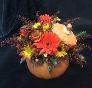 Harvest Pumpkin Arrangement in Exeter, NH | DOT'S FLOWER SHOP