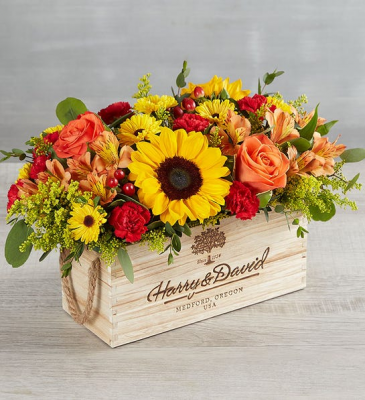 Harvest Spice Centerpiece 179493