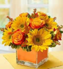 Harvest Sun Orange roses & Sunflowers