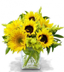 Be Happy Special - Fields of Sunflowers Sunflower Arrangment
