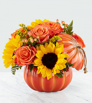 Harvest Traditions Pumpkin Bouquet Fall in Punta Gorda, FL | CHARLOTTE COUNTY FLOWERS