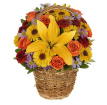 Harvest Vine Basket Arrangement