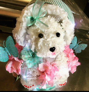 Hat box Puppy  Custom designed  in Ozone Park, NY | Heavenly Florist