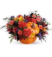 Hauntingly pretty pumpkin - 609 Arrangement