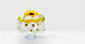 Have a Daisy of a Birthday