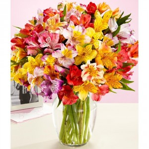 Have a Happy Day...Weekly Special! All Alstroemeria  starts @ $29.99 in Gainesville, FL | PRANGE'S FLORIST