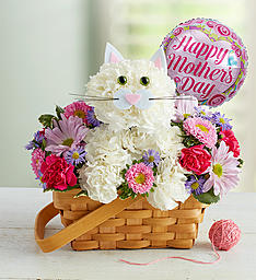 Have A Purrrrfect Mother's Day! Floral Arrangement in Winston Salem, NC | RAE'S NORTH POINT FLORIST INC.