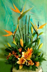 Hawaiian Holiday Tropical Arrangement