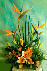 Hawaiian Holiday Tropical Arrangement in Fair Lawn, NJ | DIETCH'S FLORIST