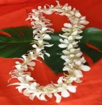 Hawaiian Lei- White and Purple Available Local delivery/pickup only- Arriving week of Jun. 5