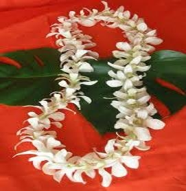 Hawaiian Lei- White  Local delivery/pickup only
