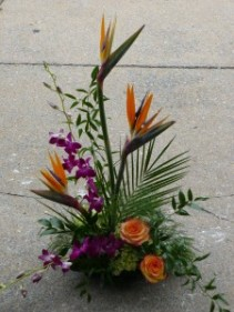 aloha! Orchids, Roses, Bird of Paradise