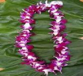 Hawiian Lei -Purple Local delivery/pickup only- Arriving week of Jun. 5