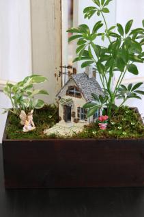 Hazel's Home