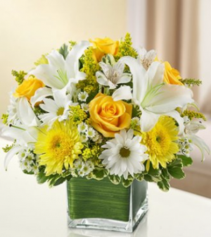 Healing Tears Arrangement in Winston Salem, NC | RAE'S NORTH POINT FLORIST INC.
