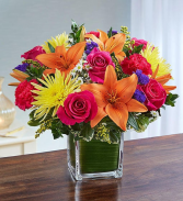Multicolor Bright Birthday Flowers