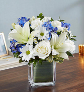 Healing Tears™ Blue & White clear glass cube vase