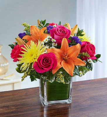 Healing Tears - Bright Multicolor Sympathy Arrangements