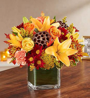 Healing Tears™ Fall  in Valley City, OH | HILL HAVEN FLORIST & GREENHOUSE