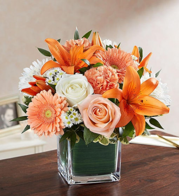 Healing Tears - Peach, Orange & White Sympathy Arrangements