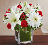 Healing Tears™ Red and White Sympathy Arrangement
