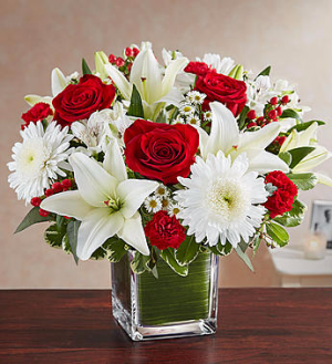 Healing Tears™ Red & White  in Valley City, OH | HILL HAVEN FLORIST & GREENHOUSE
