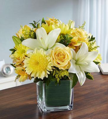 Healing Tears™ Yellow & White