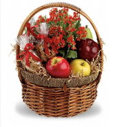 Health & Nut Basket & flowering plant Basket