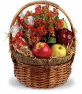 Health Nut Basket H1082A