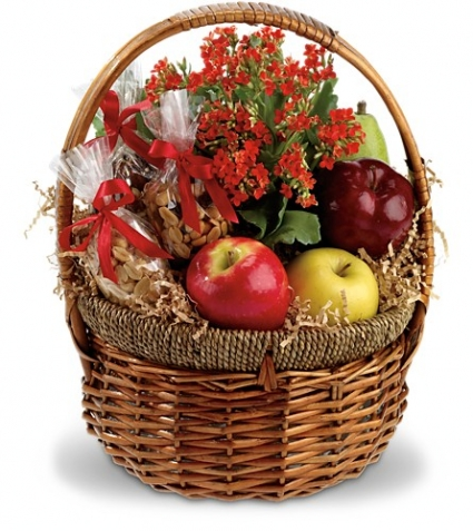 Health Nut basket EN-4G