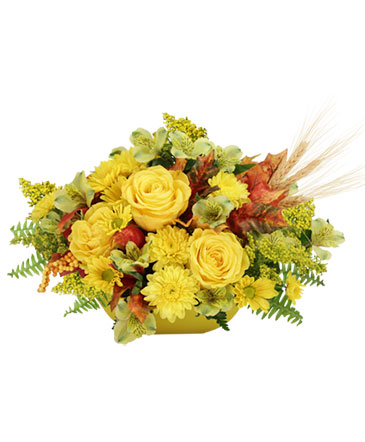 HEART OF GOLD Arrangement