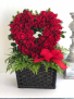 Heart of Roses Rose Arrangement (Valentine's Day Special)