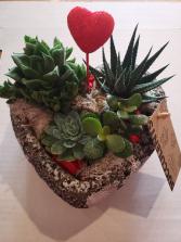Heart Succulent Planter Planter
