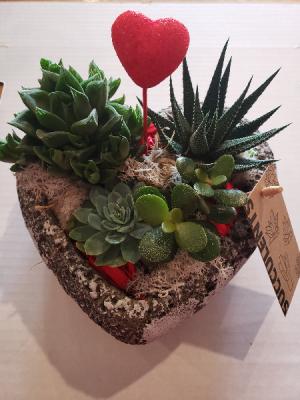 Heart Succulent Planter Planter in Stouffville, ON | Centerpiece Flowers