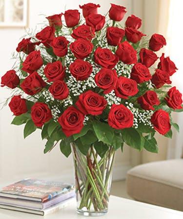 Heart Throb 36 Roses