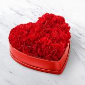 Heartfelt Carnation Box  Flowers