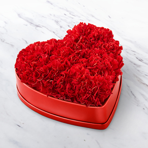 Heartfelt Carnation Box  Flowers