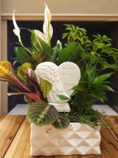 Hearts in Heaven Dish Garden