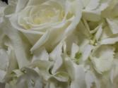 Heavenly Hydrangea Package Wedding