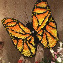 Heavenly original Butterfly
