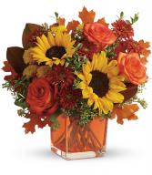 Hello Autumn Bouquet DX TFL11-2B Teleflora