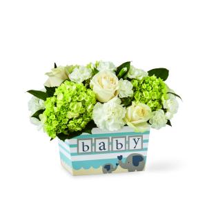 Hello Baby Boy! Baby Boy Flower Arrangement in Warman, SK   QUINN & KIM'S FLOWERS