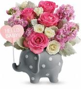 HELLO BABY ELEPHANT GIRL NEW BABY GIRL