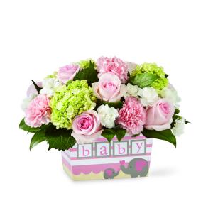 Hello Baby Girl! Baby Girl Flower Arrangement in Saskatoon, SK | QUINN & KIM'S FLOWERS