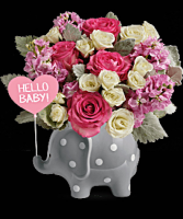 Hello Baby Girl  Elephant keepsake container