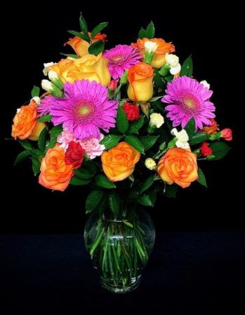 Hello Beautiful High & Magic Roses with Gerber Daisies