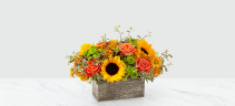 Garden Gathered RUSTIC CENTERPIECE